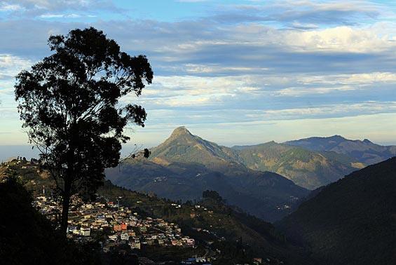 Kodaikanal landscape